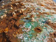 Corrosion caused partly by barnacles