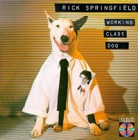 Rick Springfield's dog Ronnie, a bull terrier/Great Dane mix appeared on several of his album covers.