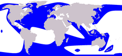 Orca range (in blue)